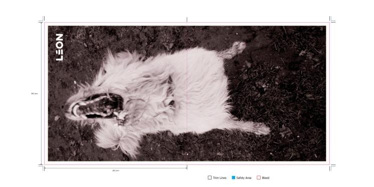 BL018---LP-Vinyl-Poster_305mm-x-610mm